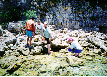 Fossil hunting in Philipines